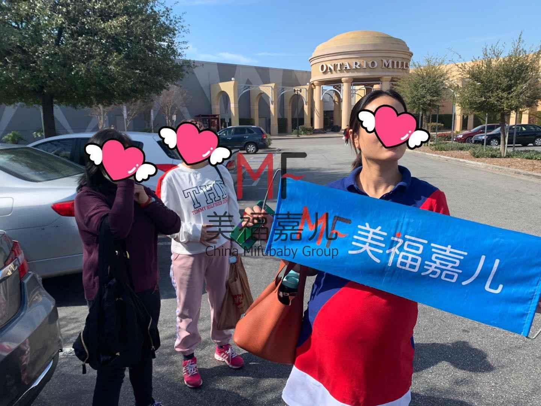 赴美生子的妈妈们参加了么5万个黄澄澄南瓜,迎接万圣节!
